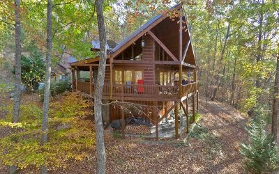 Blue Ridge Single Family Home For Sale: 466 Hoot Owl Hill
