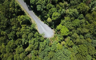 Blairsville Residential Lots & Land For Sale: Lot 9 Hidden View