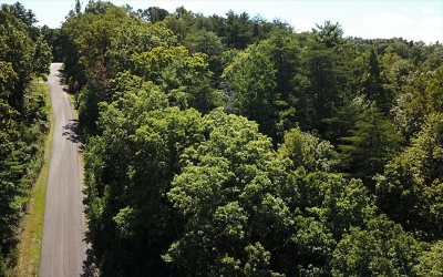 Blairsville Residential Lots & Land For Sale: Lt 10 Hidden View