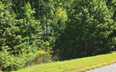 Blairsville Residential Lots & Land For Sale: Lt 13 Hidden View