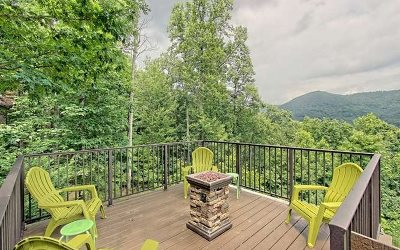 Blairsville Single Family Home For Sale: 755 Ross Ridge Road