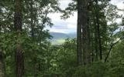 Blairsville Residential Lots & Land For Sale: Lot 1 Pinnacle Place