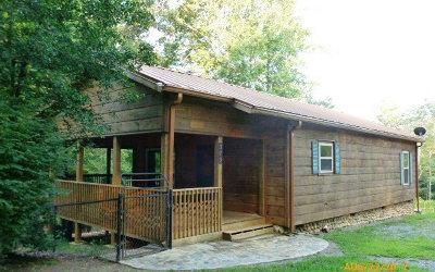 Murphy Single Family Home For Sale: 379 Ranger Estates Rd