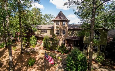 Blairsville Single Family Home For Sale: 310 Chateau Drive