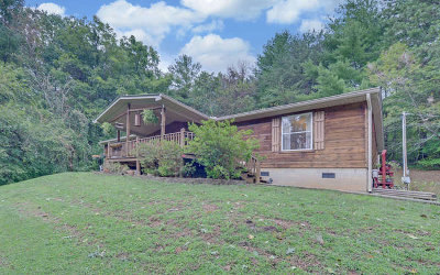 Hayesville Single Family Home For Sale: 67 Eagle Lane