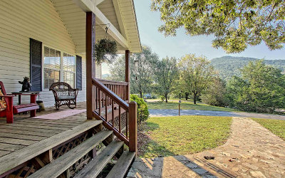 Hiawassee Single Family Home For Sale: 3601 Swallows Creek Rd