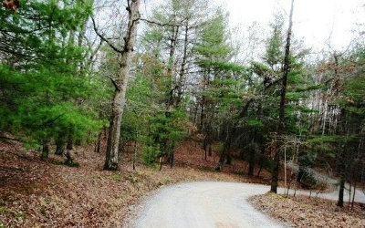 Blue Ridge Residential Lots & Land For Sale: 6.59 Scenic Mtn View Rd