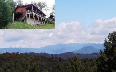 Cherokee County Single Family Home For Sale: 815 Smokey Hollow