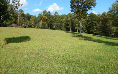 Blairsville Residential Lots & Land For Sale: 18-19 Nottely Meadows