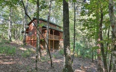 Blue Ridge Single Family Home For Sale: 260 Ridgecrest Drive