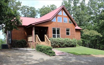 Mineral Bluff Single Family Home For Sale: 259 Chigger Ridge