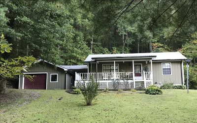 Blairsville Single Family Home For Sale: 45 James Drive