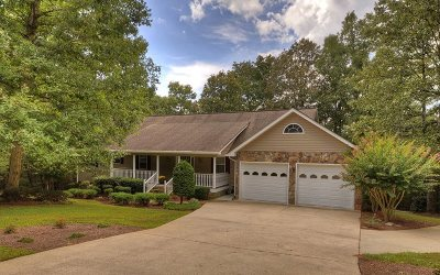 Ellijay Single Family Home For Sale: 161 W D Court