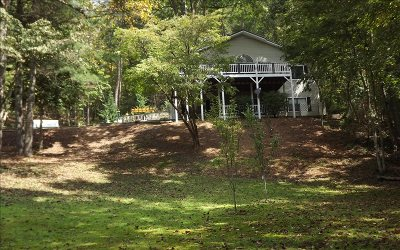 Blairsville Single Family Home For Sale: 256 Cook Mountain Drive