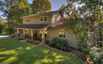 Ellijay Single Family Home For Sale: 660 Flat Branch Road