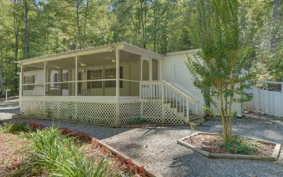 Hiawassee Single Family Home For Sale: 4684 Jones Gap Road