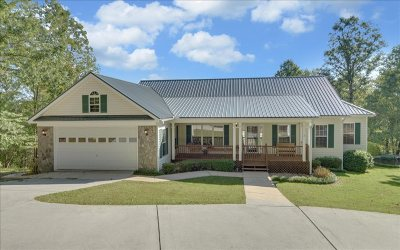 Ellijay Single Family Home For Sale: 180 W D Court