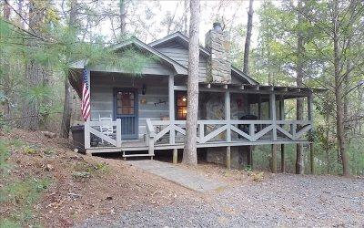 Blue Ridge Single Family Home For Sale: 250 Chinkapin Drive