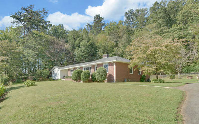 Ellijay Single Family Home For Sale: 58 Crawford Street
