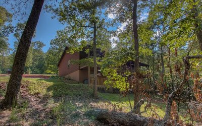 Blairsville Single Family Home For Sale: 678 Warnock Mtn. Acres