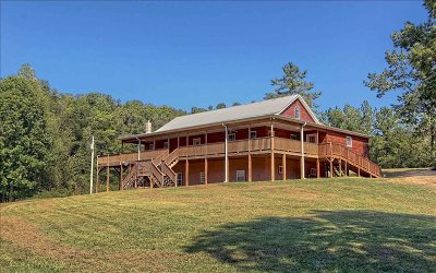 Blairsville Single Family Home For Sale: 131 Horseshoe Lane