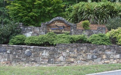 Ellijay Residential Lots & Land For Sale: Lt14 Cohutta Mtn Springs