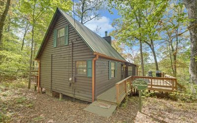 McCaysville Single Family Home For Sale: 133 Conroy Street
