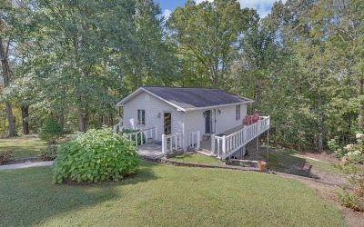 Blairsville Single Family Home For Sale: 1029 Meeks Road