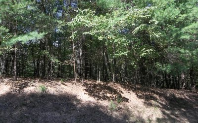 Ellijay Residential Lots & Land For Sale: 3445 Newport