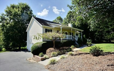 Blairsville Single Family Home For Sale: 67 Coosa Valley Road