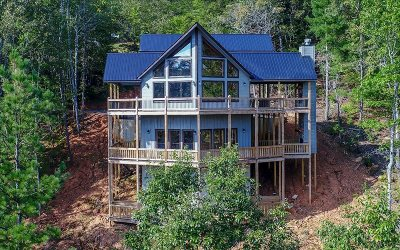 Blue Ridge Single Family Home For Sale: 140 Newton Drive