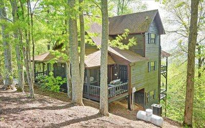 Blairsville Single Family Home For Sale: 187 Moon Ridge