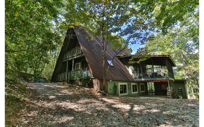 Ellijay Single Family Home For Sale: 131 Laurel Lane