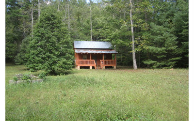 Ellijay Single Family Home For Sale: 590 Creekview Drive