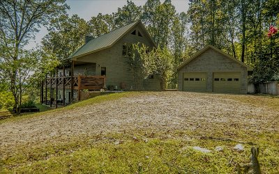 McCaysville Single Family Home For Sale: 142 Mile High Drive