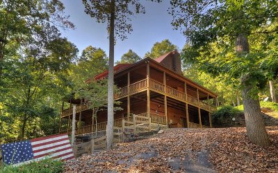 Blairsville Single Family Home For Sale: 65 Jenkins Trail