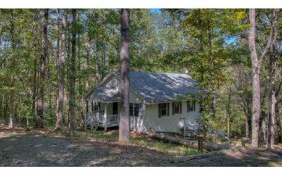 Blairsville Single Family Home For Sale: 193 Larry Lane