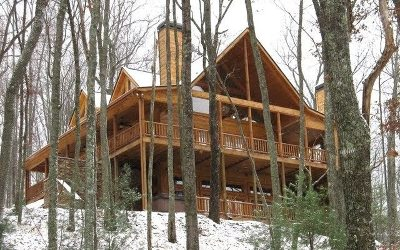 Blue Ridge Single Family Home For Sale: 845 The Forest Has Eyes
