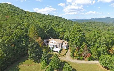 Blairsville Single Family Home For Sale: 372 Wilkie Rd