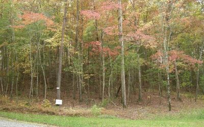Ellijay Residential Lots & Land For Sale: # 18 Pickett Mill Lane