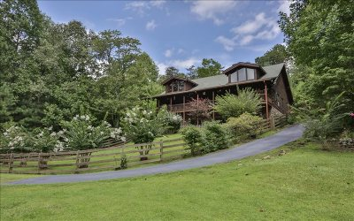 Ellijay Single Family Home For Sale: 59 Mossy Rock Court