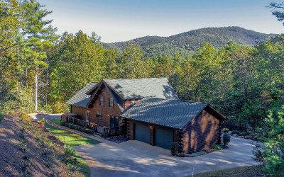 Ellijay Single Family Home For Sale: 4 Autumn Lane