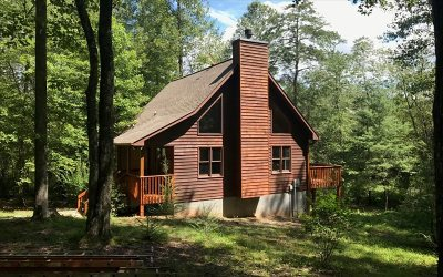 Blue Ridge Single Family Home For Sale: 4304 Lickskillet Road