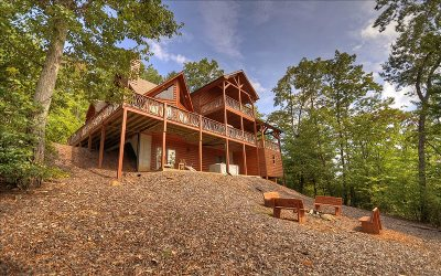 Blue Ridge Single Family Home For Sale: 370 Birdseye View