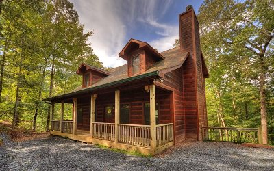 Ellijay Single Family Home For Sale: 221 Acacia Ct