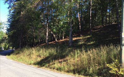 Ellijay Residential Lots & Land For Sale: Lt16 Stone Road