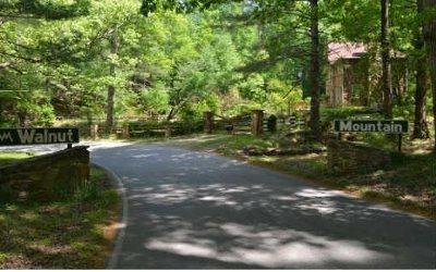 Ellijay Residential Lots & Land For Sale: M104 Walnut Mountain