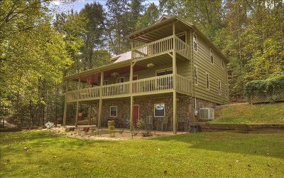 Ellijay Single Family Home For Sale: 130 Pleasant Gap Lane