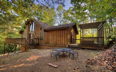 Ellijay Single Family Home For Sale: 56 Olaf Court