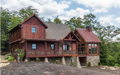 Mineral Bluff Single Family Home For Sale: 100 Mountain Laurel Ridg